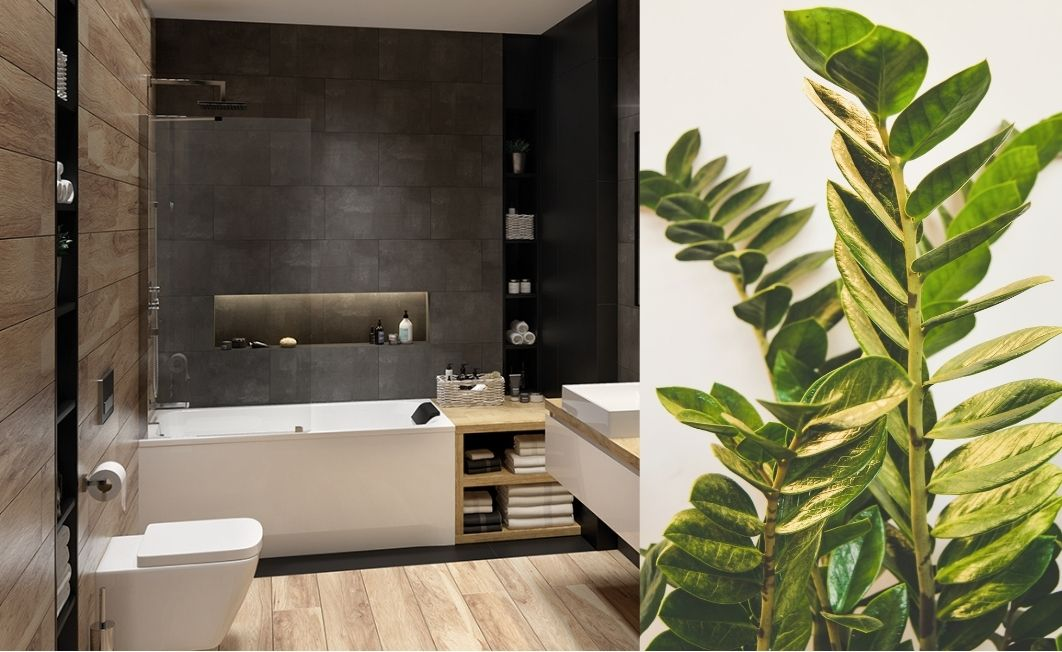 A breeze of spring in the bathroom with Sanplast brand